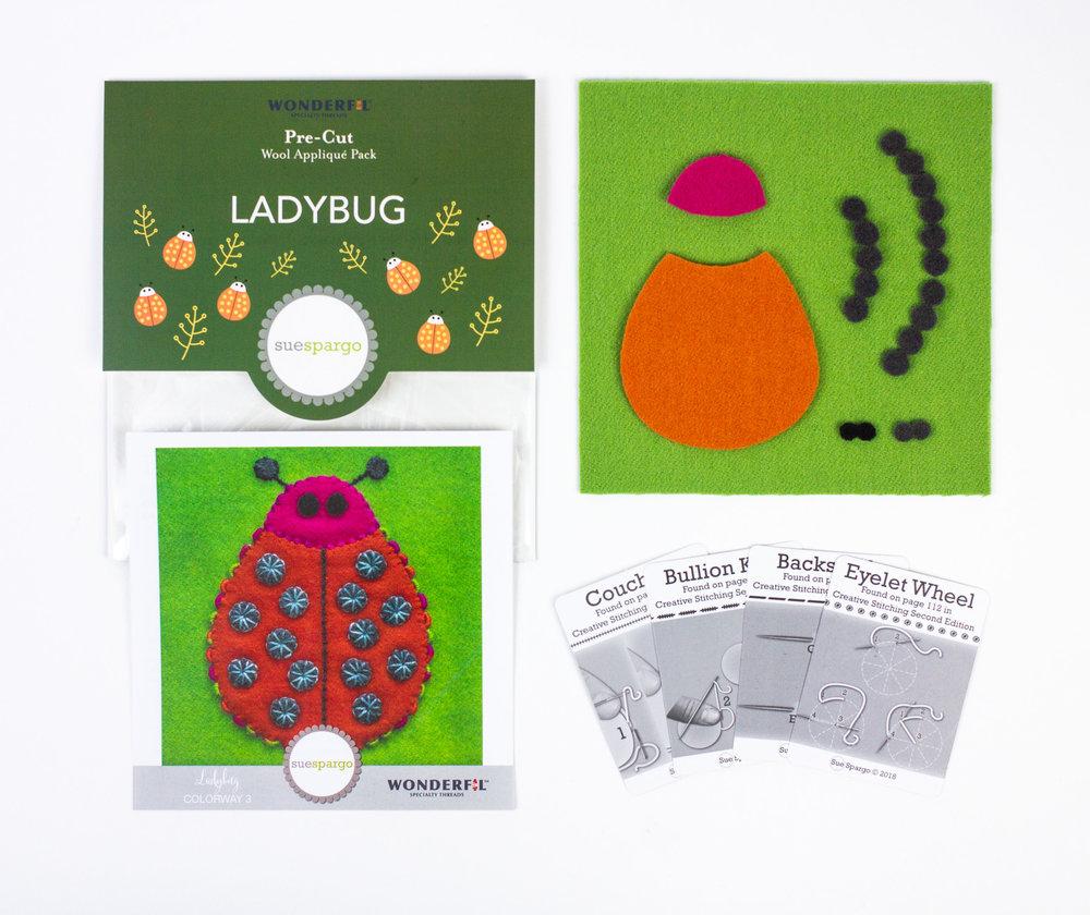 Ladybug3-inside.jpg