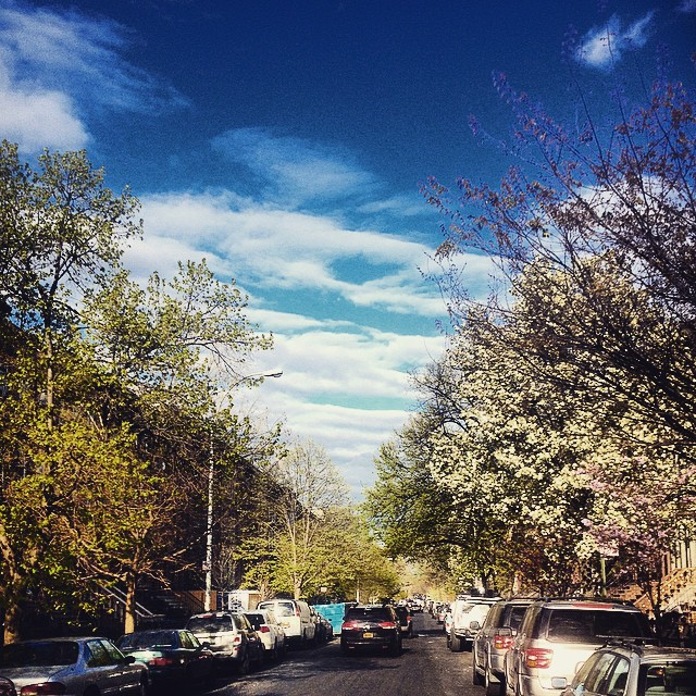Spring. Bout Time. #Brooklyn