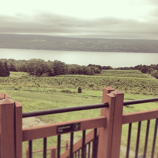 In Wine Country #upstate #newyork #fingerlakes #weddingseason #kooleyisdrunk