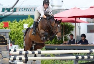 ROADHOUSE - 10 year-old, 15.3 hand bay gelding Jumper.