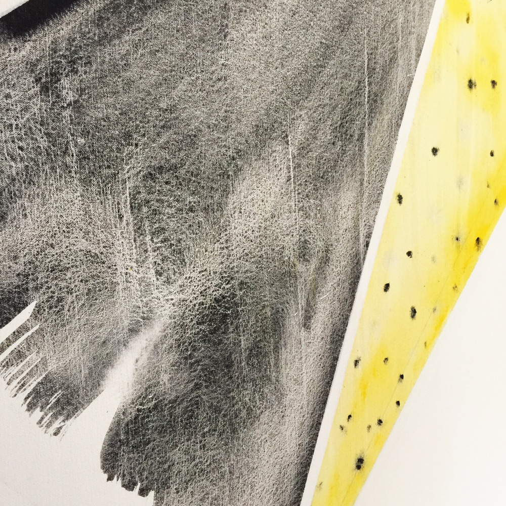 Emily Mann, Vesica Venture 2, detail, mixed media on canvas, 60x48, inkandindigo.jpg