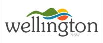 Visit_Wellington_logo2.png