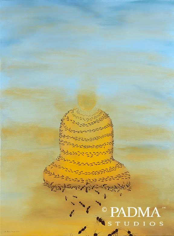 Transfigure