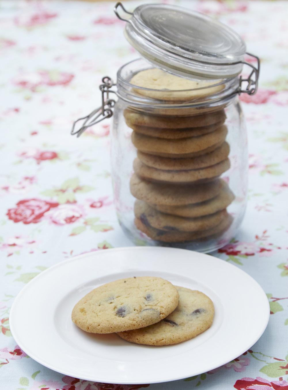 Chocolate Chip Cookies 31 final book crop for folder.jpg