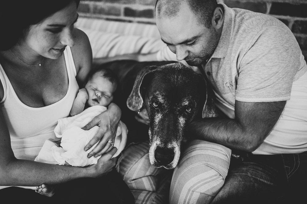 Meredith-Ward-8-6-Michigan-Family-Photographer-0699.jpg