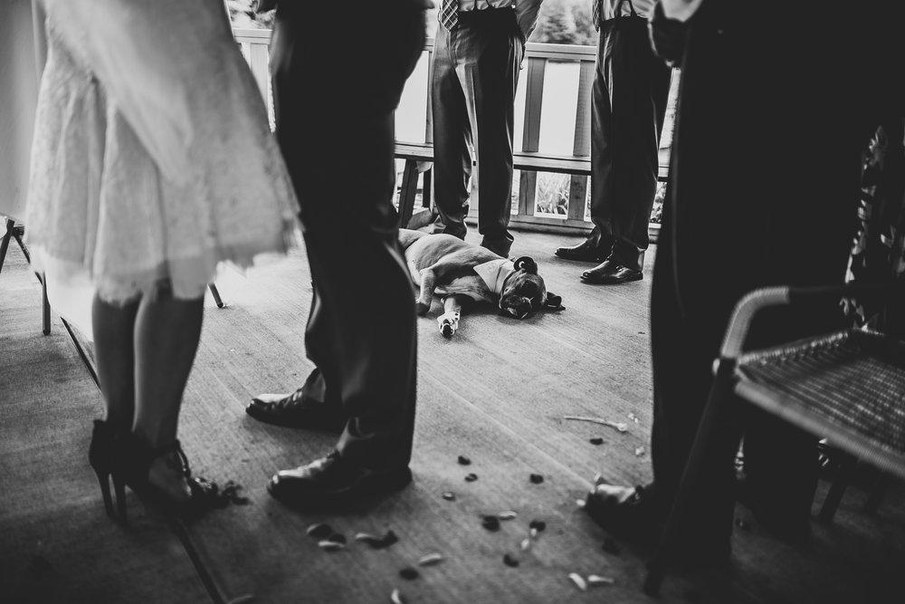 Kate-Paul-8-16-Ceremony-Michigan-Wedding-Photographer-120.jpg