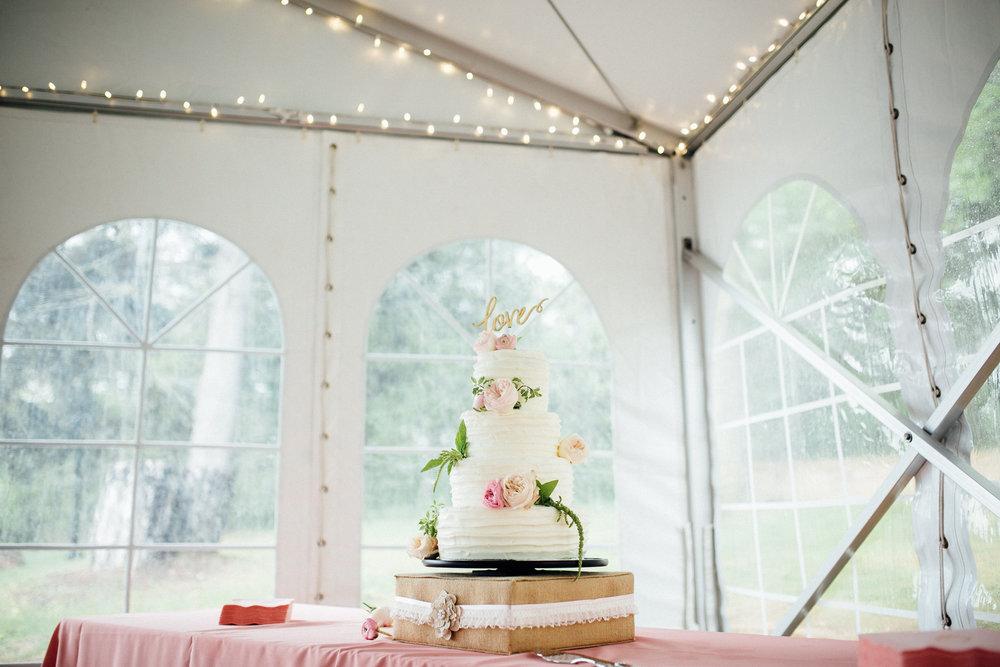 Megan-Nate-Reception-Michigan-Wedding-Photographer-5.jpg