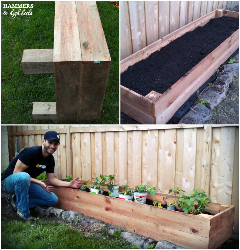 Memorial Day Mini Project Diy Raised Garden Beds Carla Like It Is
