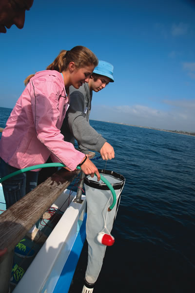 Students lower a plankton net to collect samples.