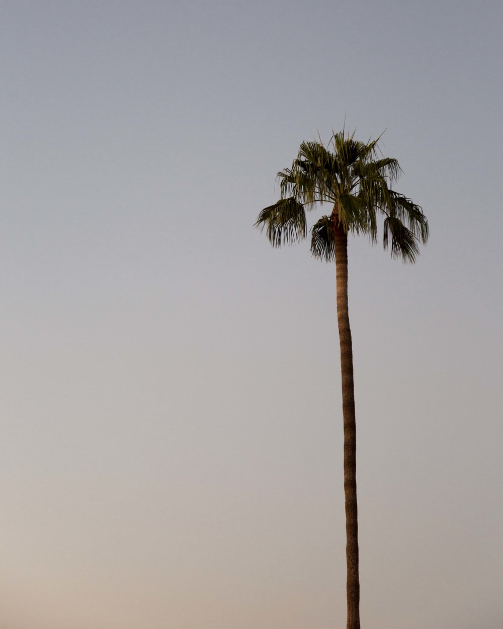 Scottsdale-01.jpg