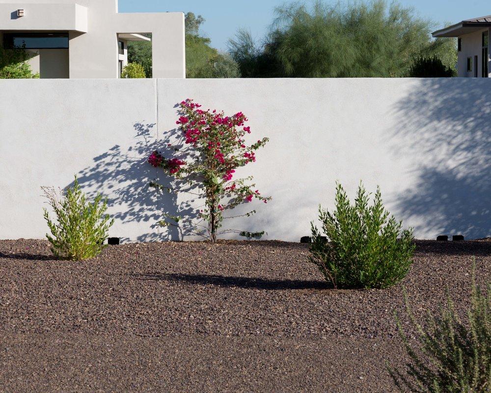 Scottsdale-03.jpg