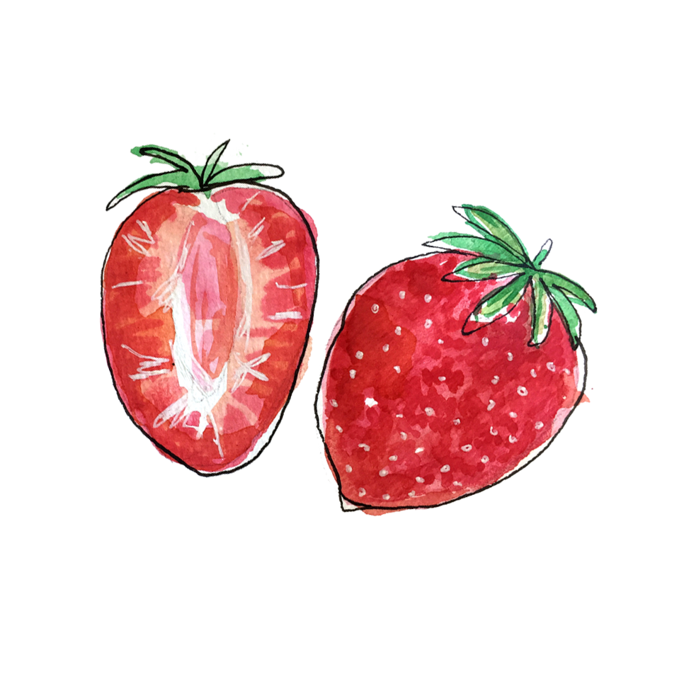 strawberries_june2018_lyndsay.png