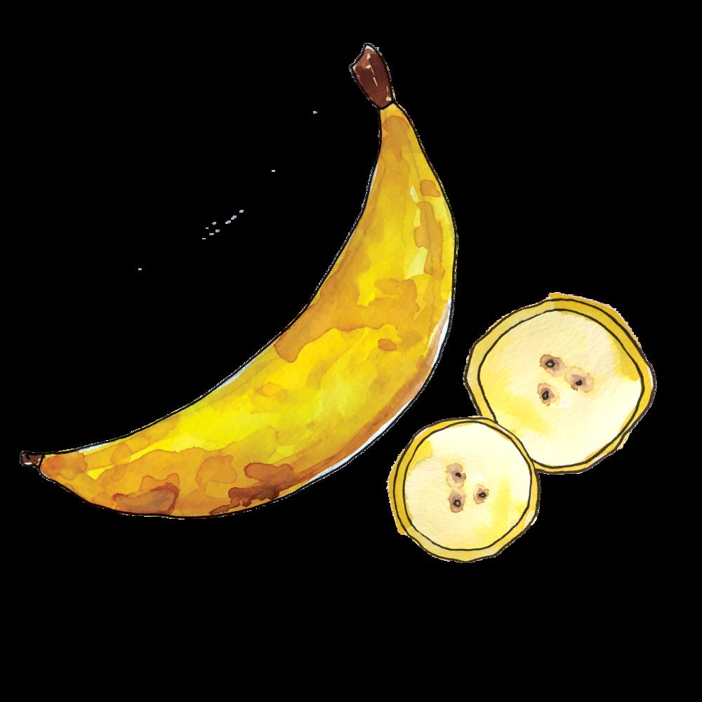 banana_june2018_lyndsay.png