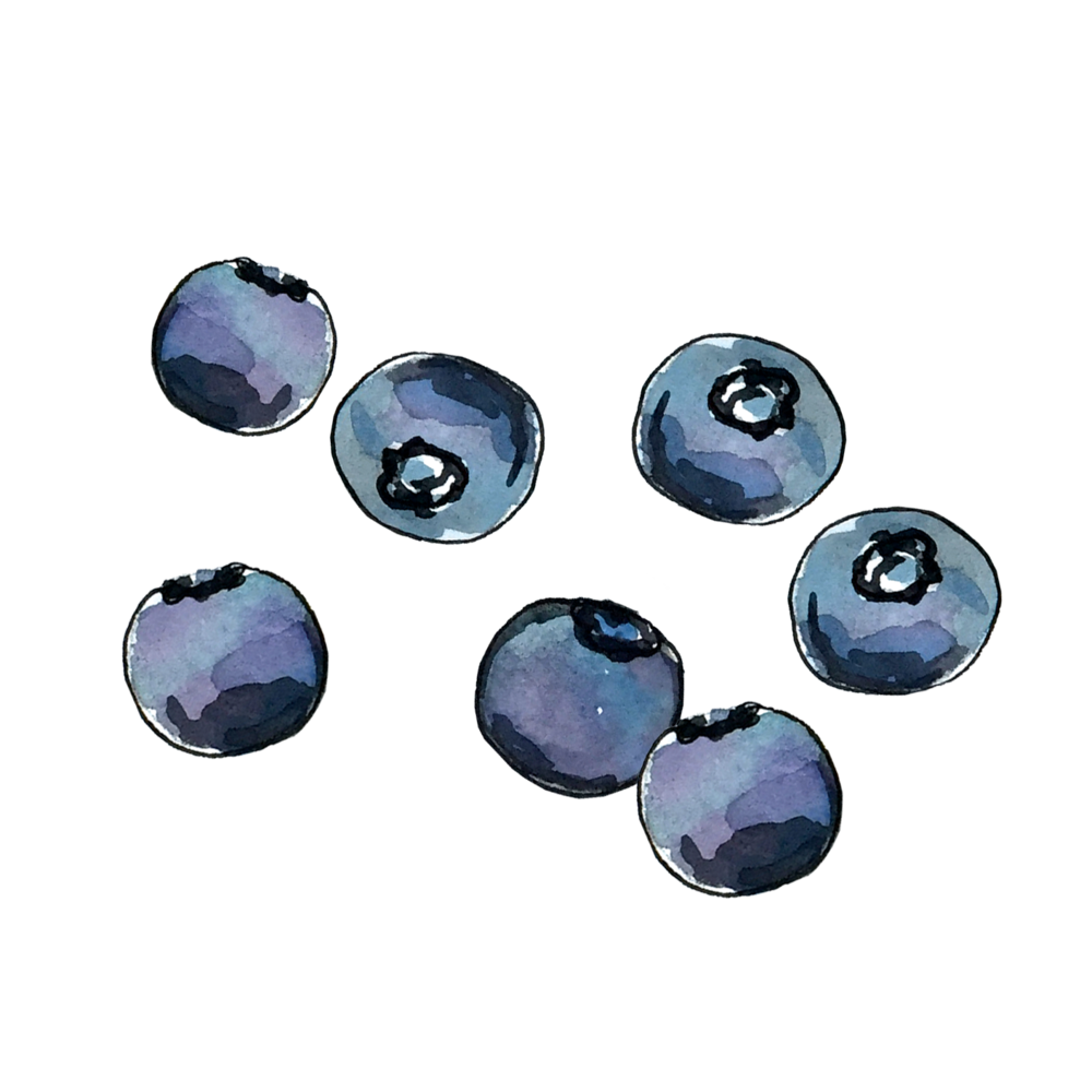 blueberry_june2018_lyndsay.png