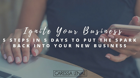 ignite-your-business-5-steps-in-5-days-to-put-the-spark-back-into-your-new-business