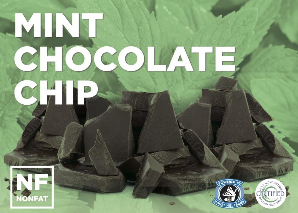 mint-chocolate-chip.jpeg