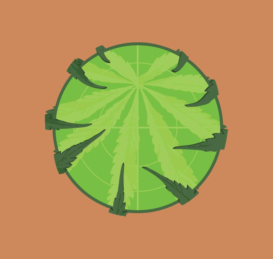 WeedRadar.png