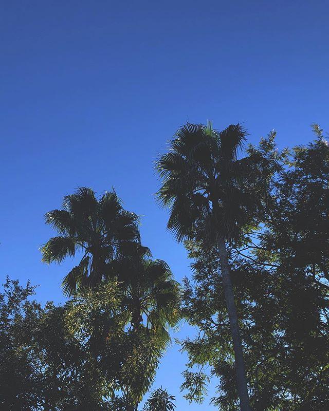 I'm here to take the sky.