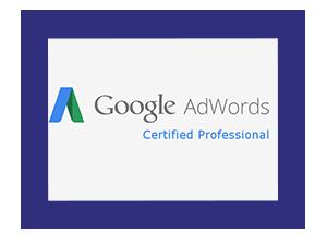 Certificaat Google Adwords, Google Adwords certified professional