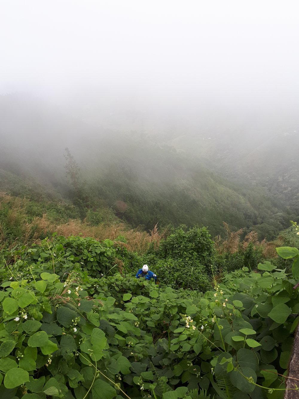 Colocación de los maniquiés en el lado de la montaña. Foto de: Kristine Nordås Toska.