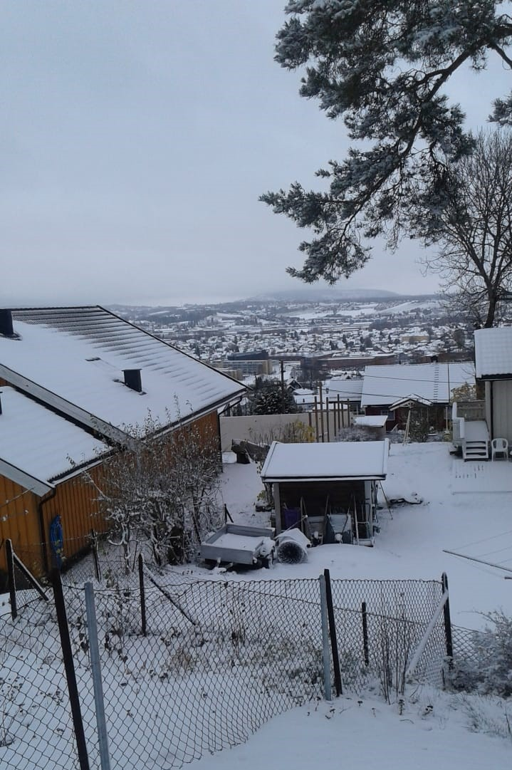 winterpic.jpg