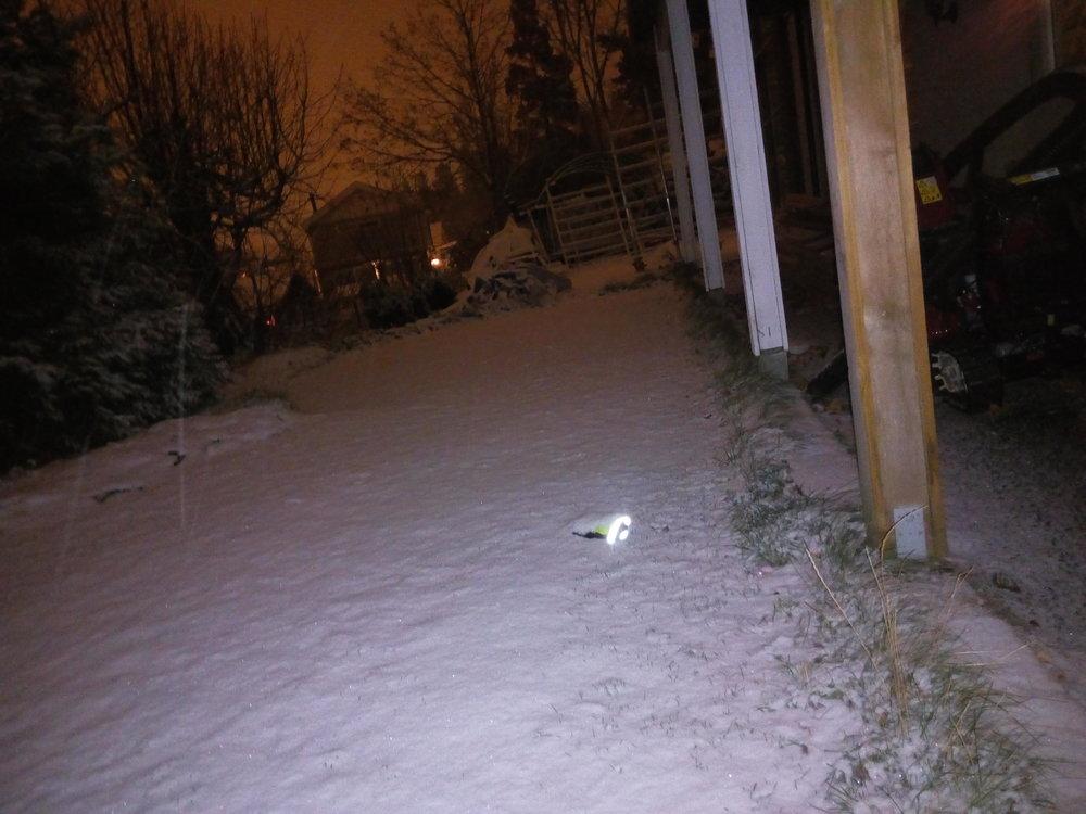 Snowfalling at night