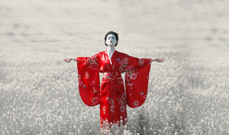Dream of Japan / from 6.99€