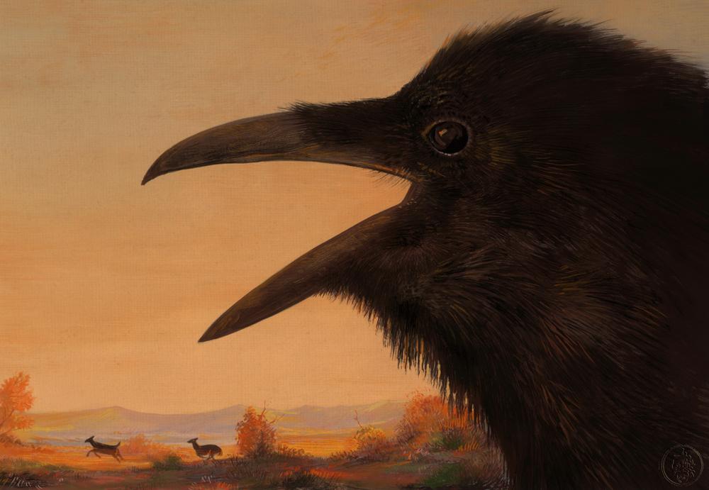 Crow (landscape)