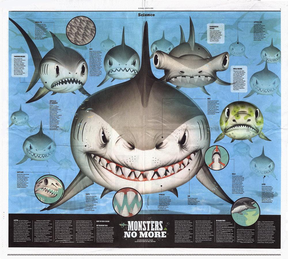 SHARK TIMES-3.jpg