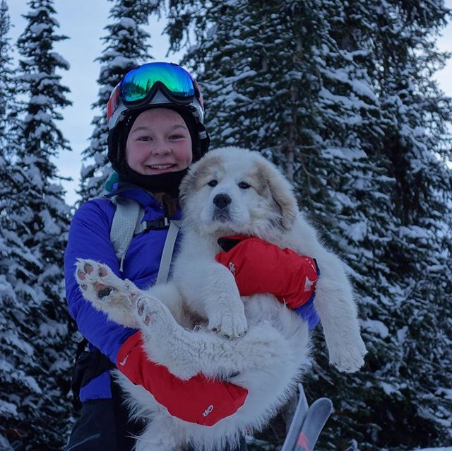 We have a new puppy and her name is Luna! Rosey is still with us and is showing her the ropes:) #boulderhutadventures #mybcbackcountry