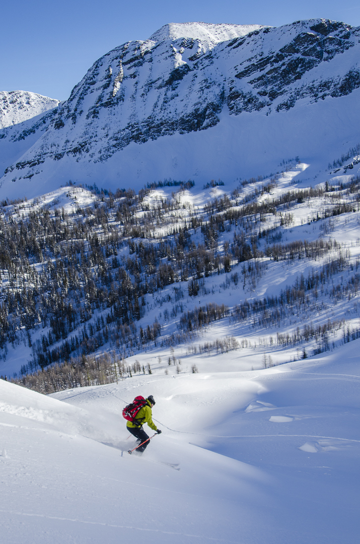 Kieran Hickey powder skiing.jpg