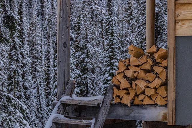 Firewood's in! Photo: Jenny Graburn