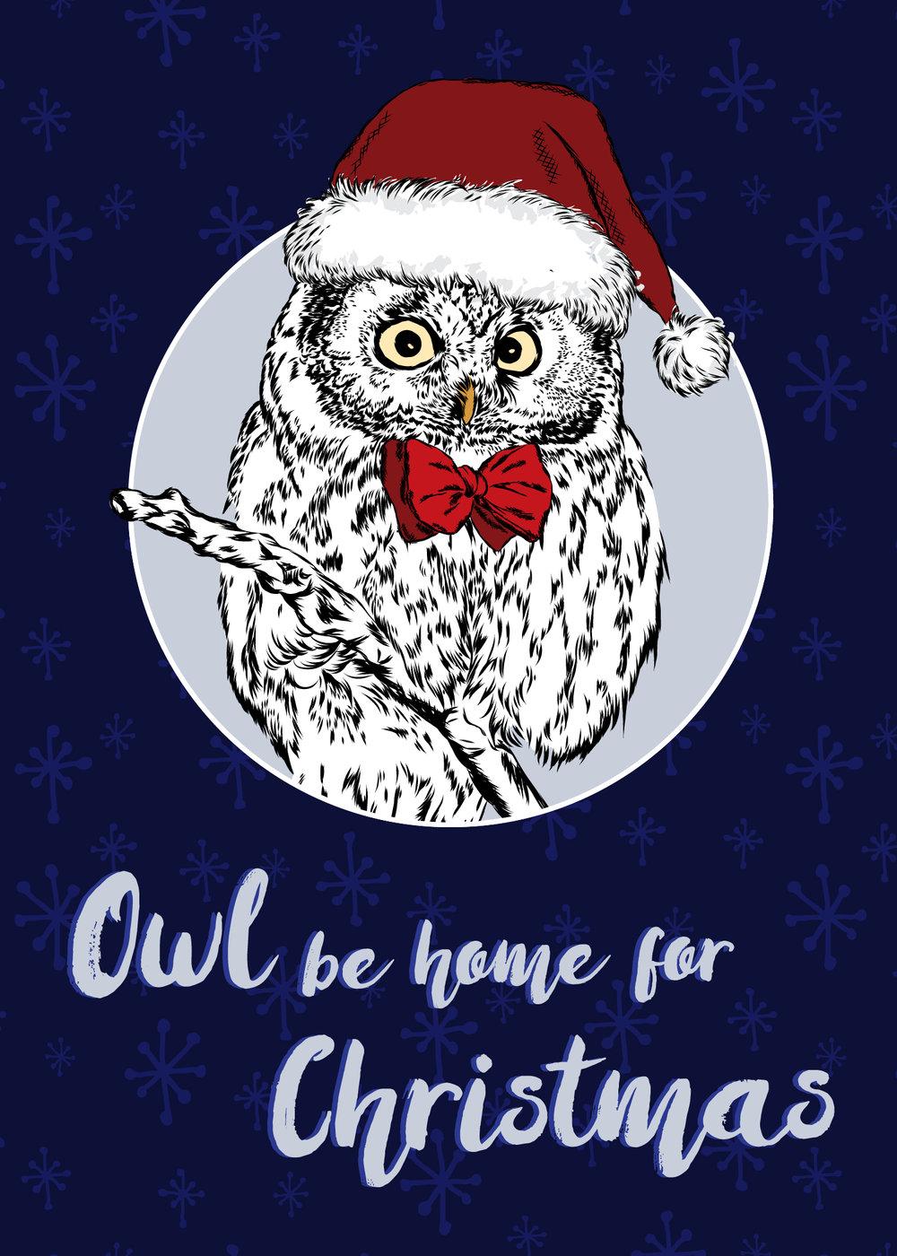 OwlBehome.jpg