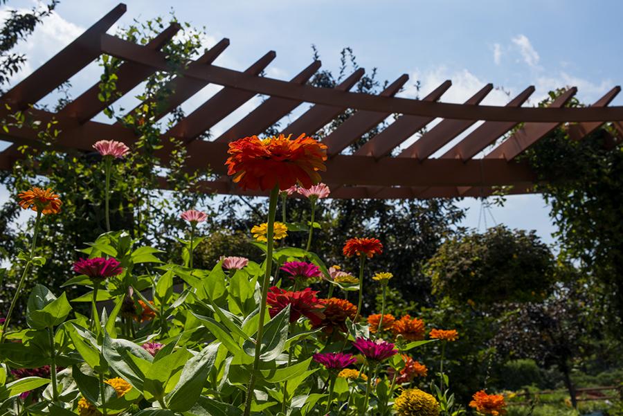 Kemper Bird Garden
