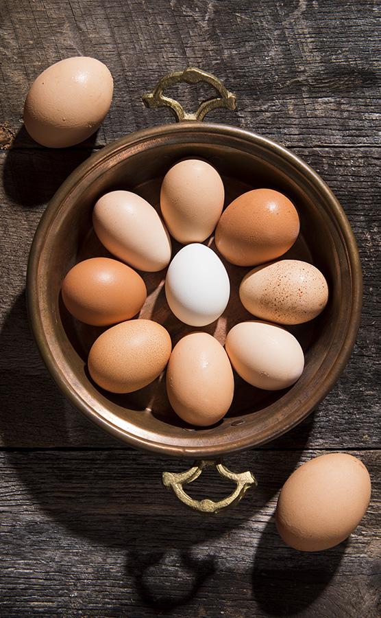 FR_Niehaus_Eggs.jpg