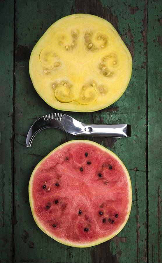 FR_Niehaus_Watermelon.jpg
