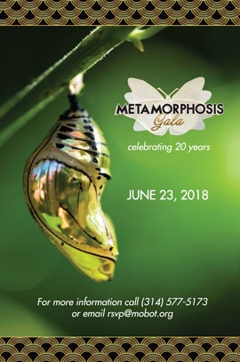 Butterfly House- Metamorphosis Gala poster