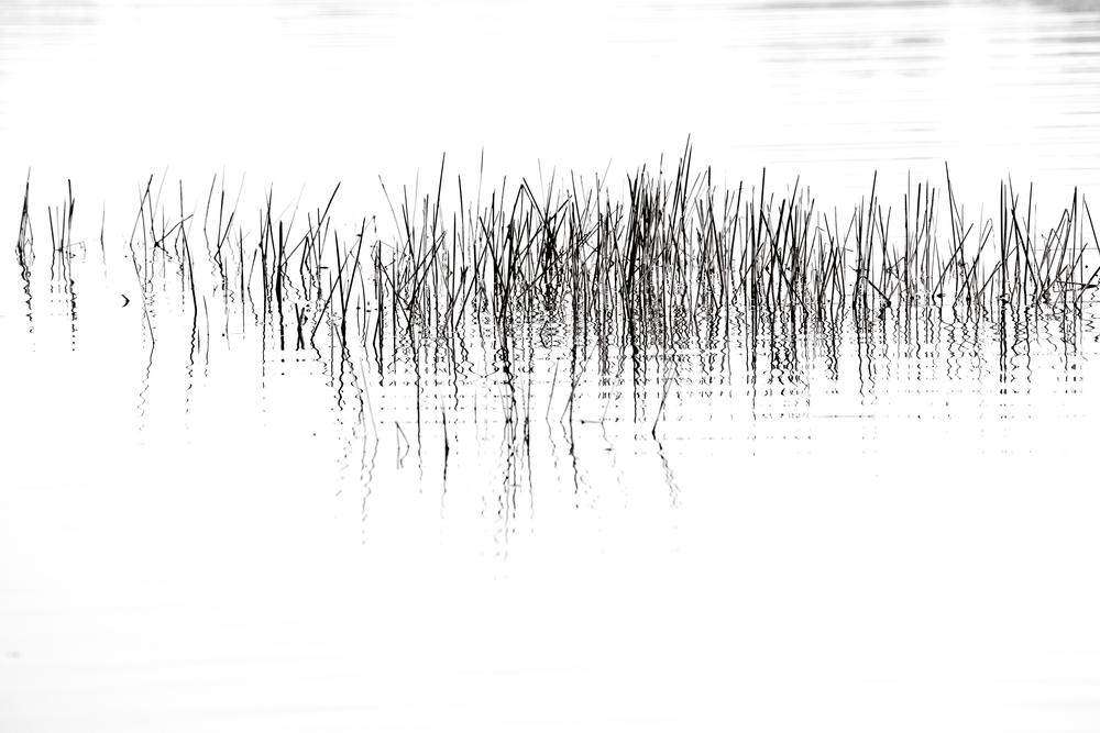 _V7A7948 - Version 2.jpg