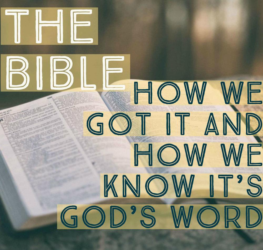 The Bible Logo.jpg