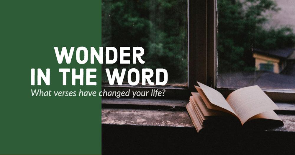 Wonder in the Word.jpg