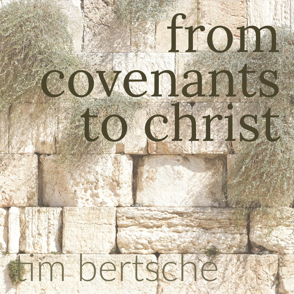 from covenants to christ.jpg