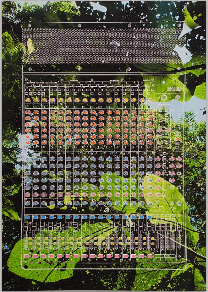 Jungle, 2010