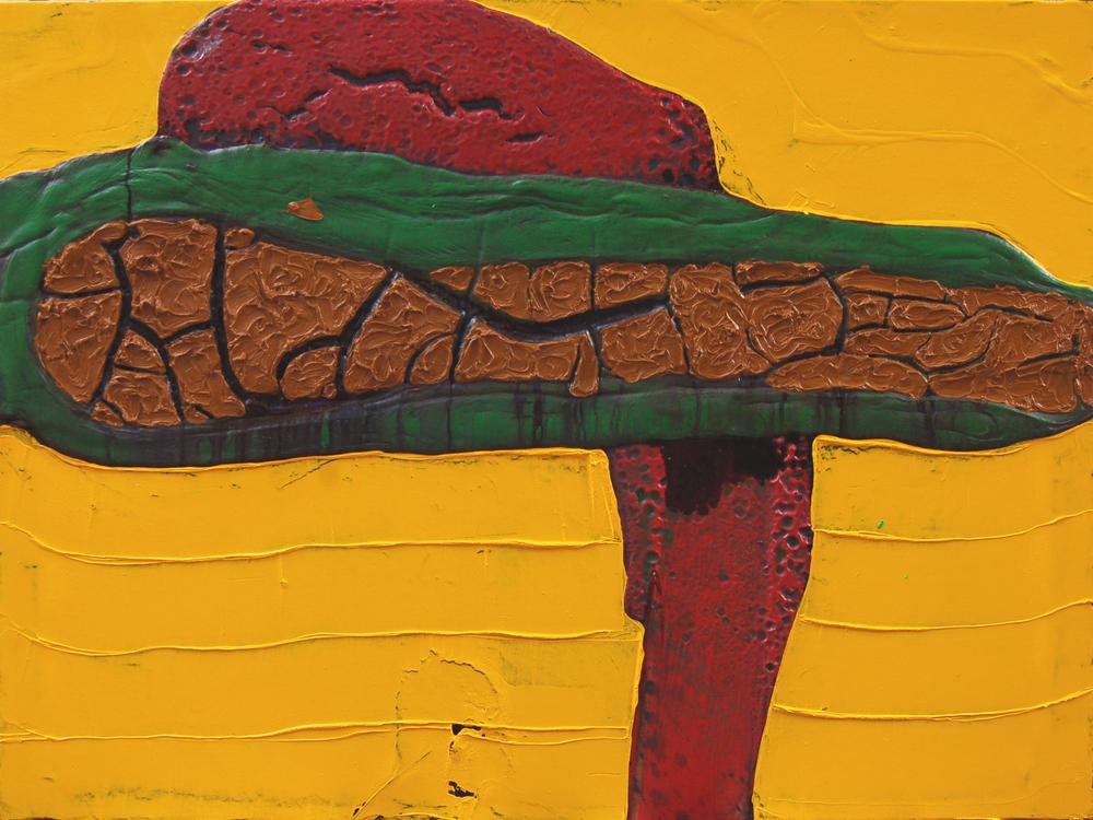 Cometa en tierra,2007