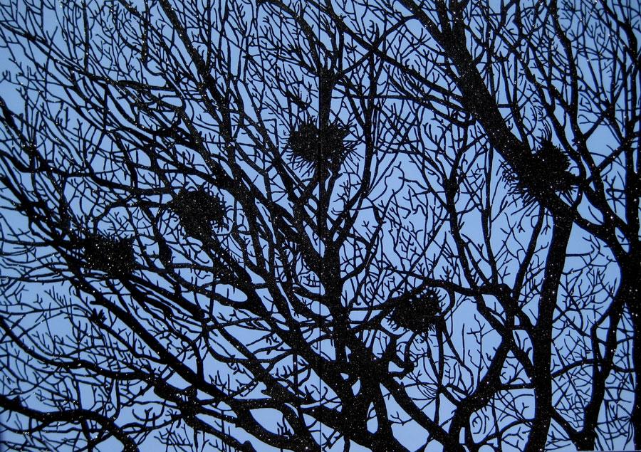 Nests (nidos)