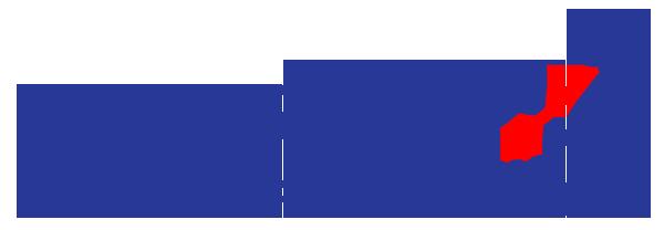 footer-logo - Stacy Callis.png