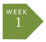 week-1.jpg