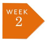 week-2.jpg