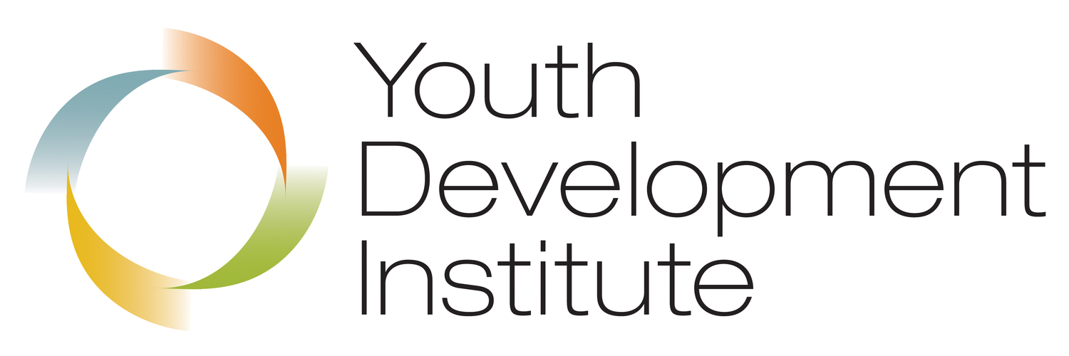 Youth Development Institute