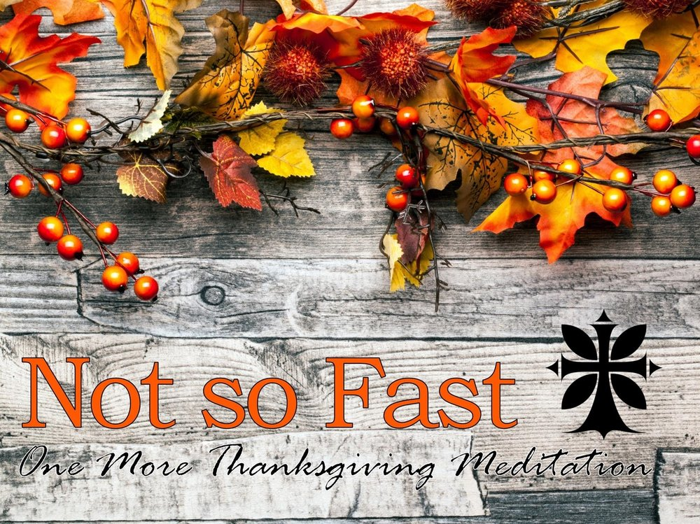 November 27, 2016 ~ Not So Fast: One More Thanksgiving Meditation (Psalm 30) ~ Pastor Jason Pilchard