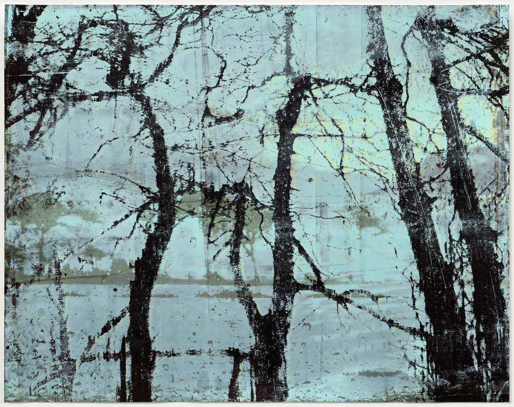 Elizabeth Magill   Anterior (2) , 2017  Mono-screenprint and paint on 600gsm Somerset Satin paper  145 x 185 cm /57.1 x 72.8 in paper size  148.5 x 188.5 x 5 cm /58.5 x 74.2 x 2 in framed  Image courtesy the artist and Kerlin Gallery
